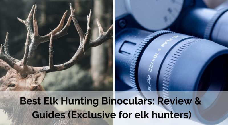 Best binoculars for elk hunting